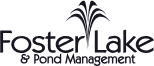 Foster Lake & Pond Management